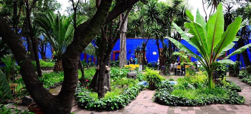 La Casa Azul en Coyoacán, Ciudad de México, ca. 2000.